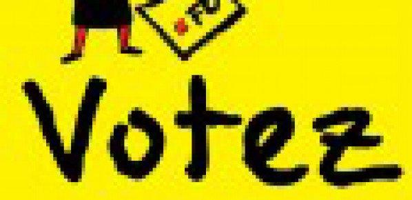 Elections professionnelles 2013